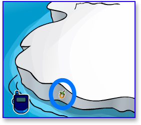 Club Penguin Secrets O'Berry Pin
