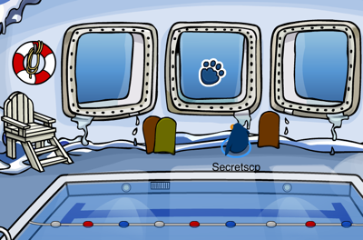 Polar Paw Print Pin in the Pool